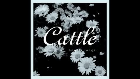 moar shoegaze. Artist : PZL079 Song : Somehow Hear Album : Cattle-Somehow Hear Songs.