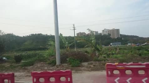 Welcome to the... Vegetable field motherer. .. the chinese are learning colors