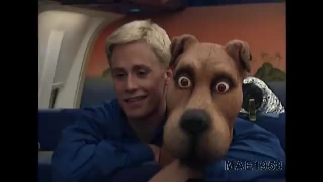 Scooob. .. holy that scooby is terrifying