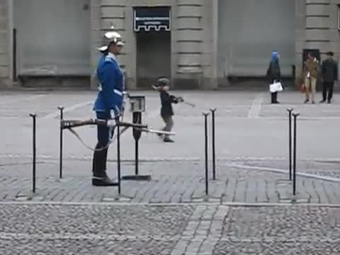 Royal guard being awesome .... .. I don't know what or who he's guarding but his uniform and rifle make me nut