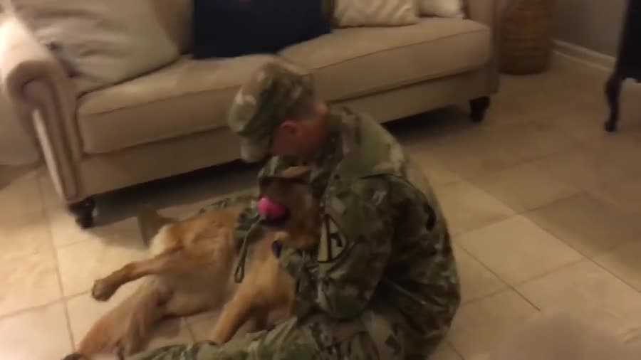 Returning soldier surprises doggo. .. those little whines of joy!